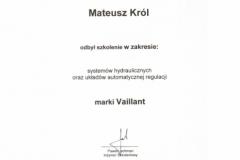 1_certyfikat9